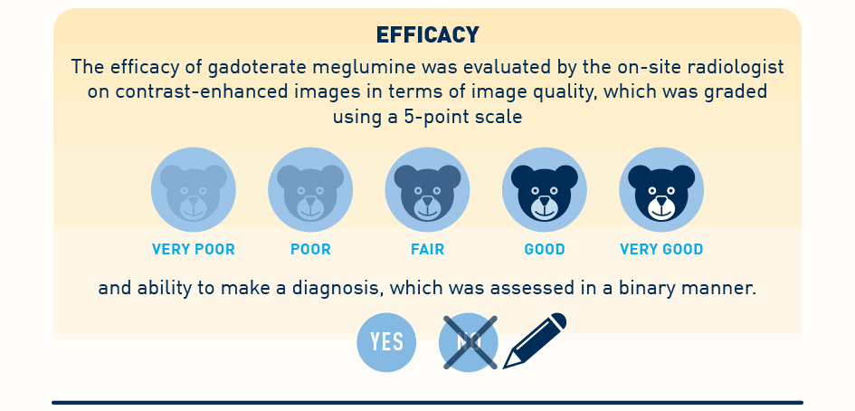 Efficacy | The efficacy of gadoterate meglumine was evaluated by the on-site radiologist on contrast-enhanced images in terms of image quality, which was graded using a 5-point scale and ability to make a diagnosis, which was assessed in a binary manner.
