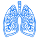 Lung Density Workflow for COVID-19 (1)